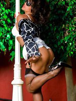 Vixen in a black giraffe print